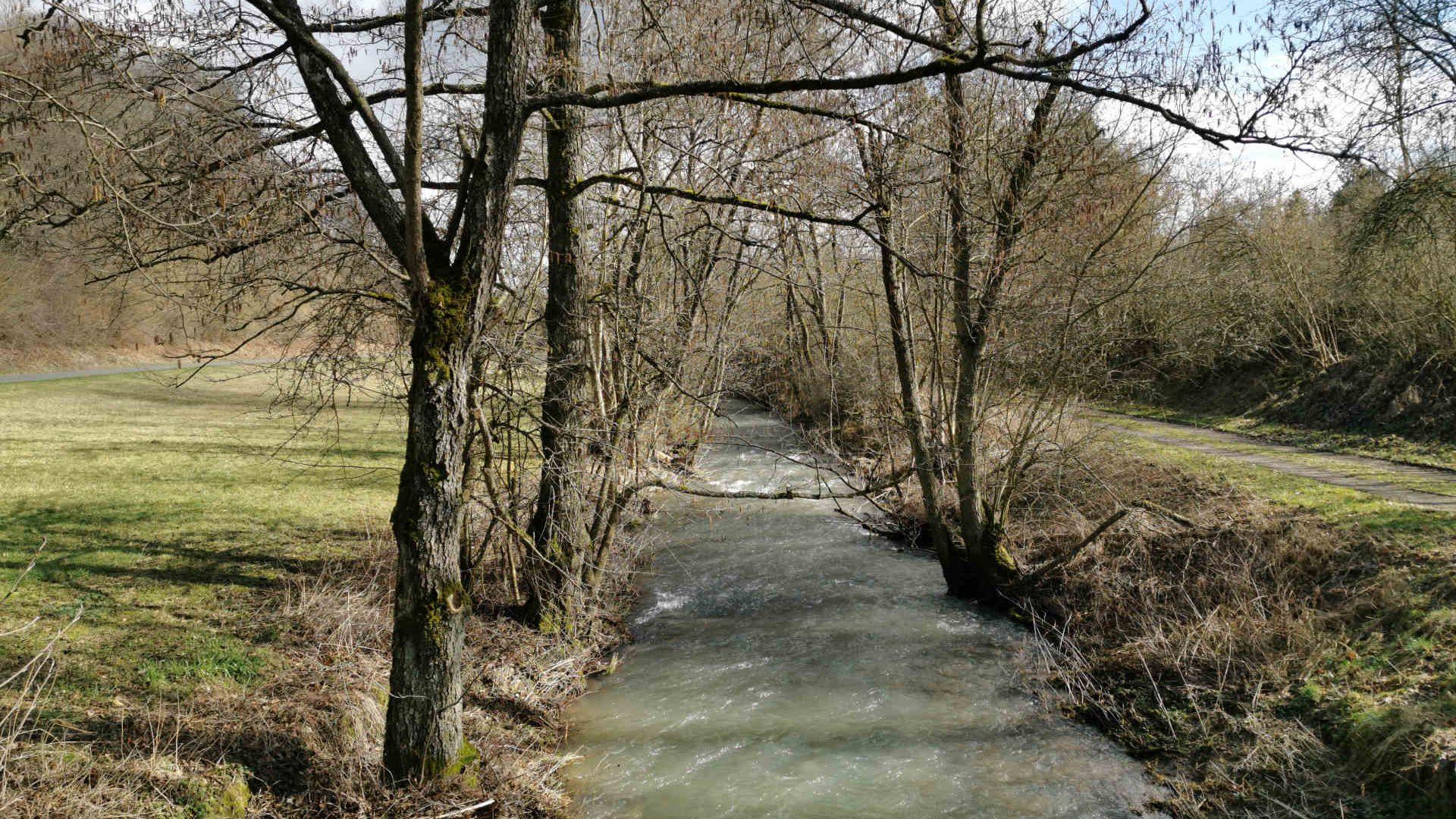 Ferienhaus-Landhaus-Loogh-Umgebung-Niederehe-Frühjahrswasser